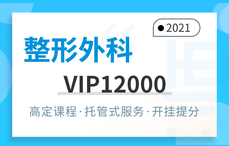 VIP12000(324)