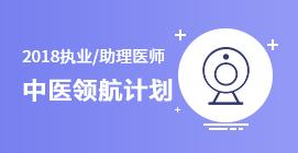 执业/助理医师中医领航计划(中医)